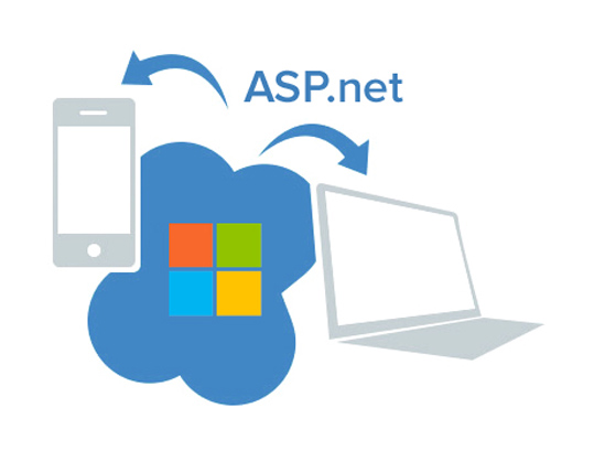asp.net solutions experts